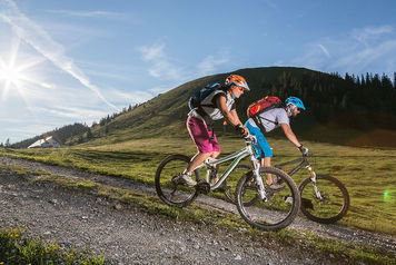 Sport and leisure time, farm holiday Berghof Walser